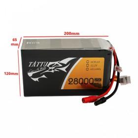 باتری لیتیوم پلیمر6 سل 28 آمپر